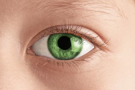 Beautiful green eye macro shot, macro
