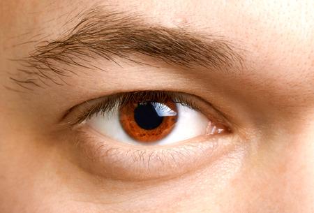 ojos marrones: Primer plano de un hombre de ojos, macro