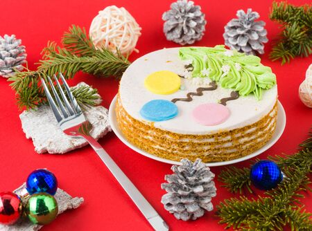 Christmas cake, on a white plate, on a red background