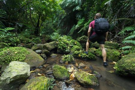 Man trekking through dense tropical rain forest full of lush green jungle vegetation