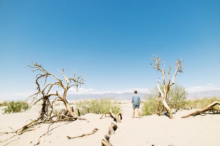 adventure travel: Man overlooking view of Sand Dunes in Death valley National Park, Hot dry arid landscape, USA