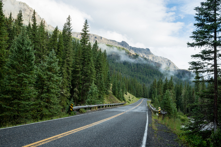 Beartooth highway, Montana, United States surrounded by lush green forest and mountains 스톡 콘텐츠