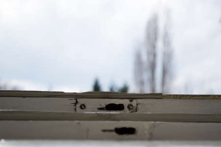 window: Window hinges