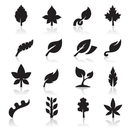 hoja marihuana: Icono de la hoja Vectores