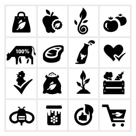Organic Food Icons Vector