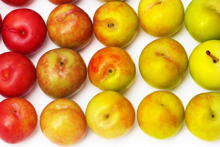 matured plum