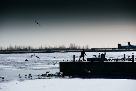 frozen lake: Lake Ontario