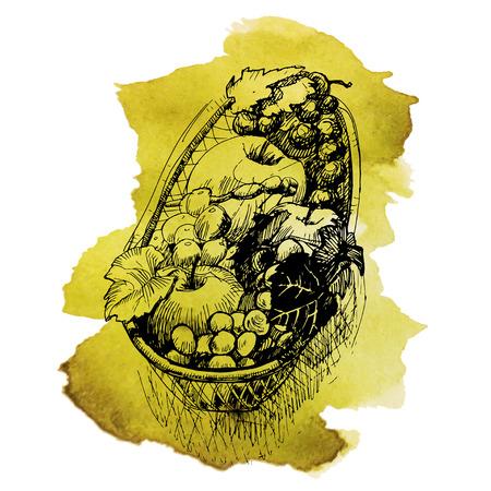 canasta de frutas: Canasta De Frutas. Granja fresca. Dibujado a mano ilustraci�n vectorial.