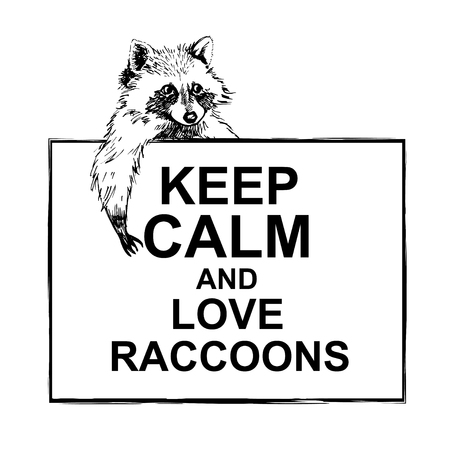 raccoons: Funny and touching raccoon lies on a banner keep calm and love raccoons  hand drawn engrave sketch vector illustration. Keep calm and love a raccoon
