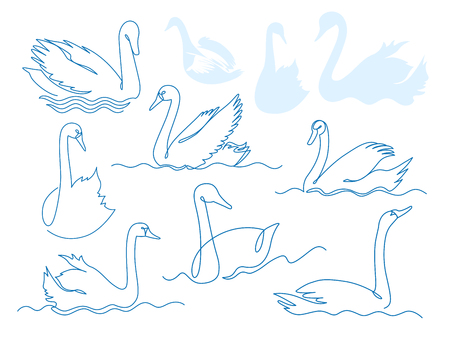 Swan continuous one line drawing vector set. Bird floating on water. Hand drawn wildlife animal. Fauna. Swan lake. Thin line waterbird specie drawing. Minimalistic contour illustration Иллюстрация