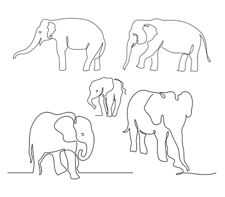 Elephants continuous one line drawings set. Wild large animals vector silhouette clipart. African jungle, rainforest mammals herd minimalistic illustrations pack. Indian wildlife linear design element