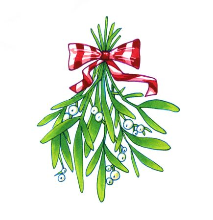 Mistletoe. Hand drawn illustration of mistletoe sprigs with red bow isolated on white background for Christmas cards and decorative design