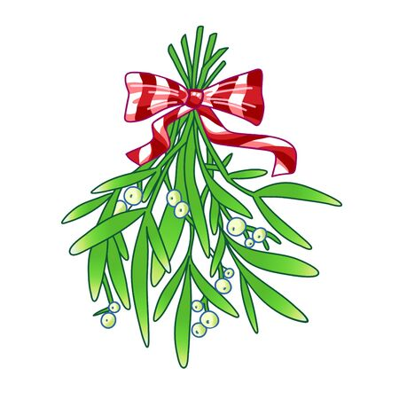 Mistletoe. Hand drawn vector illustration of mistletoe sprigs with red bow isolated on white background for Christmas cards