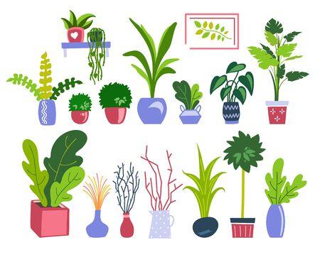 Houseplants flat illustrations vector set. Hand drawn flower pots with ornamental indoor plants
