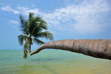 koś: ko phangan beach views