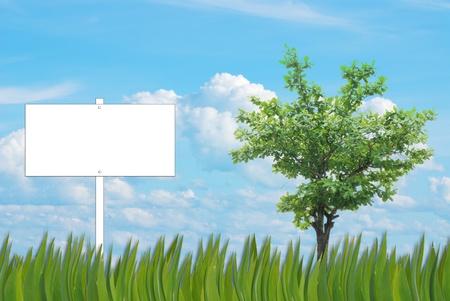 advertize: blank sign background of grass pattern on nice blue sky