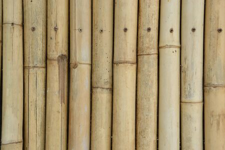 texture of old bamboo wall Stock Photo - 9788485