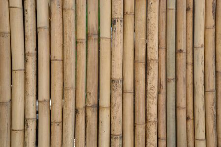 texture of old bamboo wall Stock Photo - 9788537
