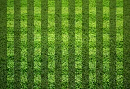pasto sintetico: campo de hierba en blanco en forma de banda Foto de archivo