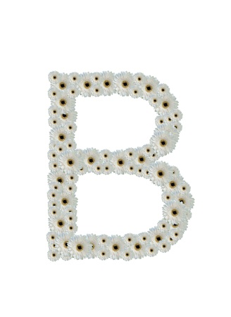 Letter B white flower fonts isolated on white background photo