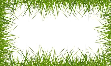 general green grass background on white background. Stock Photo - 11448790