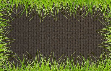 general green grass background on wood background. Stock Photo - 11448791