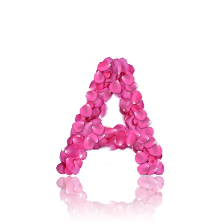 Pink rose petals alphabet with reflection on white background.