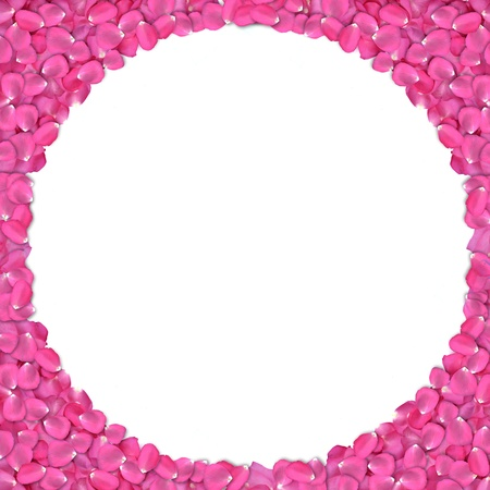 Round shape frame from rose petals on white background. photo