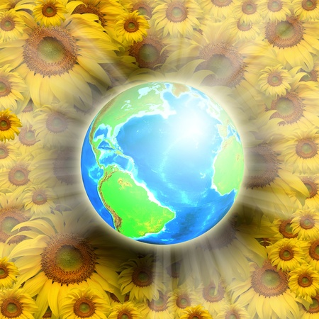 Nice globe with shiny and shadow on sunflower background. photo