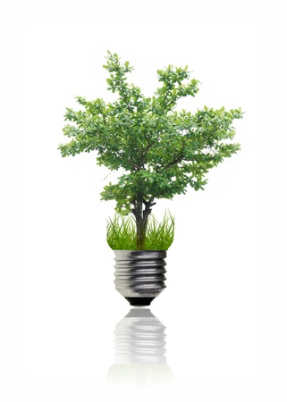 Green idea by a tree in the light bulb. Stock Photo