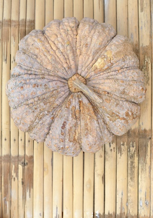 close up view of one pumpkin on traditional bamboo wall. photo
