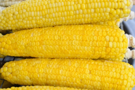 close up of boil corn pattern. photo