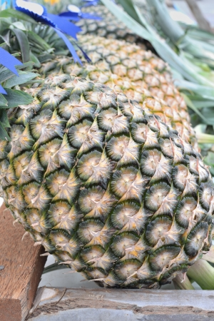 Close up of pineapple skin. Stock Photo - 13716386