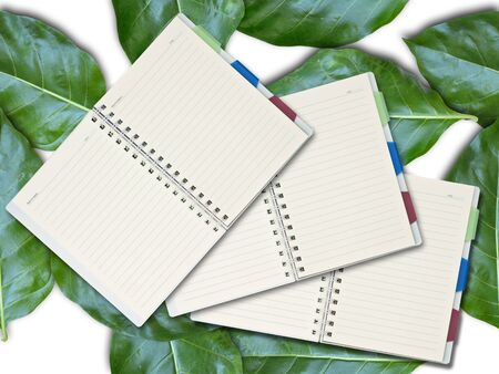 Open blank notepad on seamless green leaves background. photo