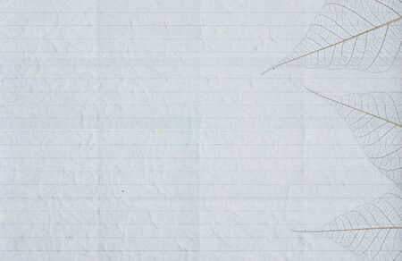 Old blank crumpled paper paper background. Stock Photo - 13922333