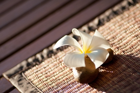 Single plumeria on the floor. photo
