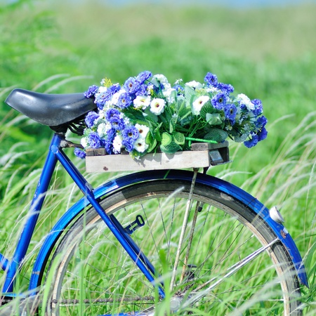 Bunch of flower on retro bicycle with green field. photo