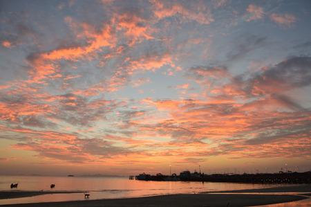Nice colorful sunset over the ocean; ko samui, thailand. Фото со стока
