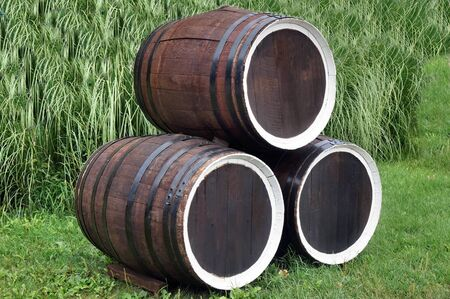 Three Wine barrels lie on a grass photo
