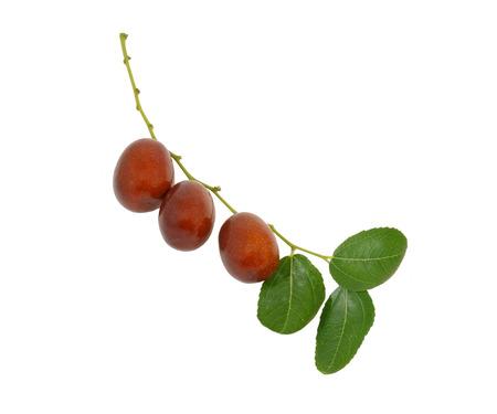 ナツメ果物 (Ziziphus 酸棗仁) 枝の葉に隔離されたホワイト バック グラウンド 写真素材