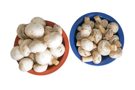 Fresh  mushrooms in a round plate Isolated on white photo