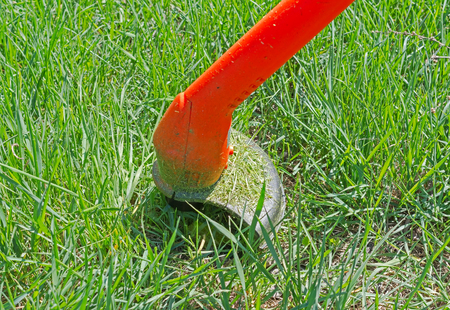 Close up of string lawn trimmer mower cutting grass, over a grass background
