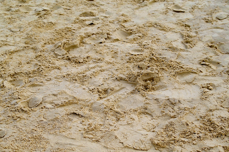the yellow river sand as background