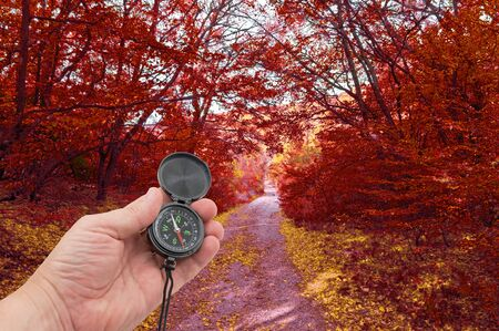 hand with compass on background autumn forest
