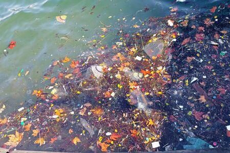 the garbage in the ocean sea water