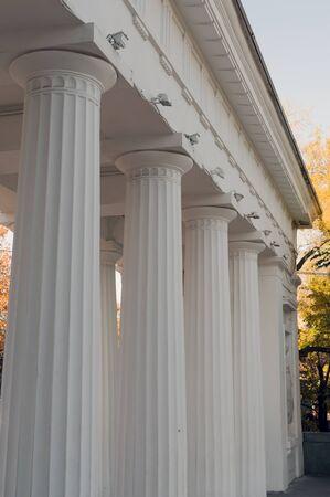 Architectural construction with big white columns Archivio Fotografico - 137475139