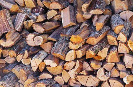A large number of firewood neatly laid for later use