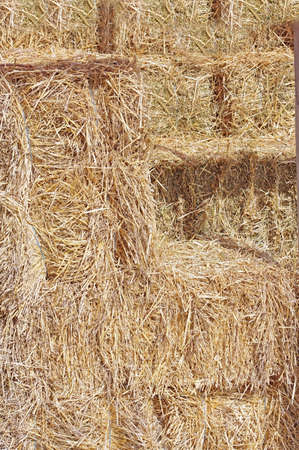 Hay texture and background. Hay bales are stacked in large stacks Фото со стока