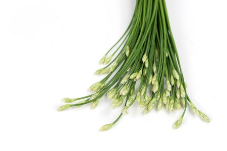 frash: Kuicheai Vegetable leaves Thailand food frash