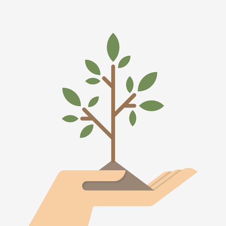 hand holding plant: Hands holding small tree Illustration